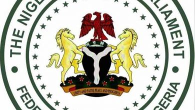 Photo of Nigerian Youth applauds Gov. Abiodun, salutes state's youth initiatives