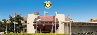Photo of ECOWAS Suspends Mali Over Coup, Imposes Sanctions