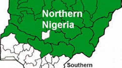 Photo of People in govt protects bandits – Northern coalition