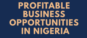 Photo of 6 Lucrative Businesses To Start In Nigeria In 2021