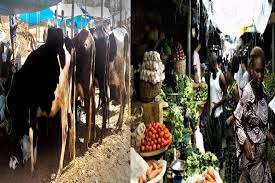 Photo of Shasha Crisis: Cattle dealers union gives FG a seven-day ultimatum to get compensation over loss of lives, cattle's, others