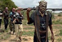 Photo of Gunmen Kidnap Hundreds of Schoolgirls In Jangebe, Zamfara State