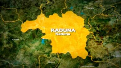 Photo of Kaduna Confirms 30 Students Abducted, 180 Others Rescue