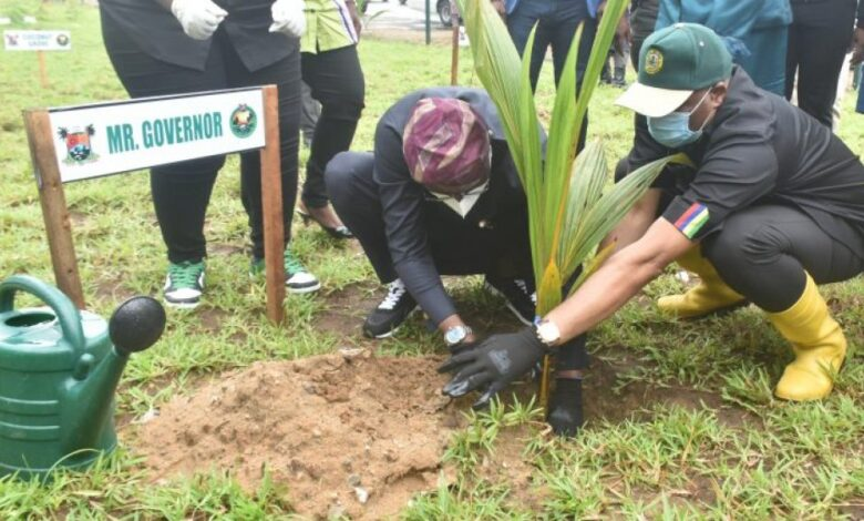 Photo of Tree Planting Day: Sanwo-Olu Warns Against Destruction Of Green Infrastructure