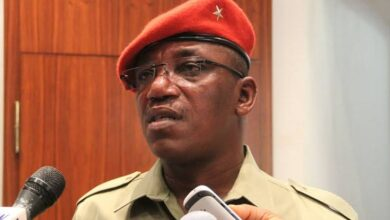 Photo of Sports Minister caused Nigeria's woes at Tokyo Olympics – Dalung