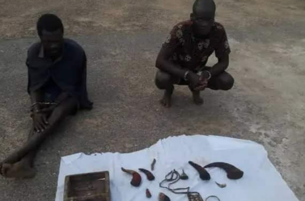 Photo of Police arrests ritualists with human head